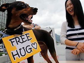 Umarmen, nicht essen: Tierschützer protestieren in Seoul gegen das Essen von Hundefleisch, das in Südkorea und anderen asiatischen Ländern als Delikatesse gilt.