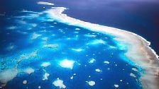 Gigantische Mülldeponie: Die Weltmeere