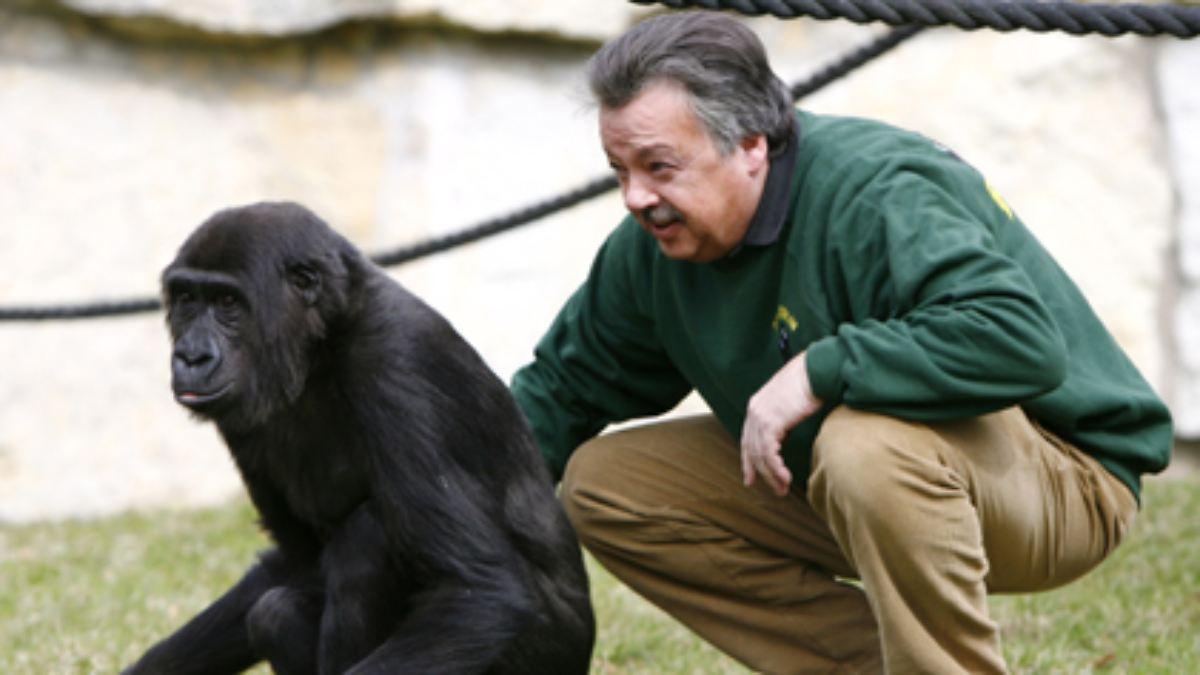 Vom Spank den Affen