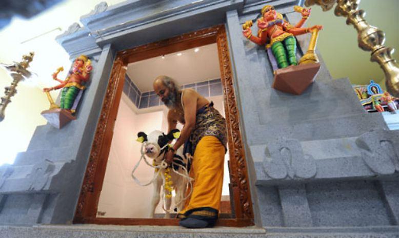 sri muthumariamman hindu tempel in hannover n. Black Bedroom Furniture Sets. Home Design Ideas