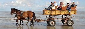 Mit der Pferdekutsche lassen sich Touristen durch das Watt bei Cuxhaven-Duhnen fahren.