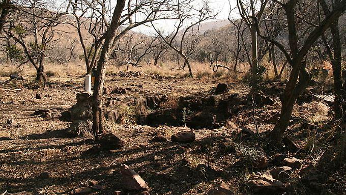 """Die Fossilienfundstätte Malapa, auch """"Wiege der Menschheit"""" genannt."""