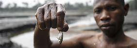Der macht niemanden mehr satt: Bauern und Fischer in Nigeria klagen seit Jahrzehnten, dass die Ölverschmutzung ihnen die Lebensgrundlage nimmt.