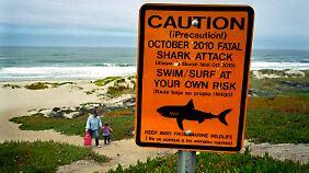 Die Wahrscheinlichkeit, bei einem Flugzeugabsturz ums Leben zu kommen, wird mit 1:3 Millionen angegeben, die eines Haiangriffes mit 1:10 Millionen.