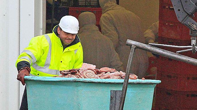 Ein Arbeiter der französischen Firma Spanghero vernichtet Fleisch.
