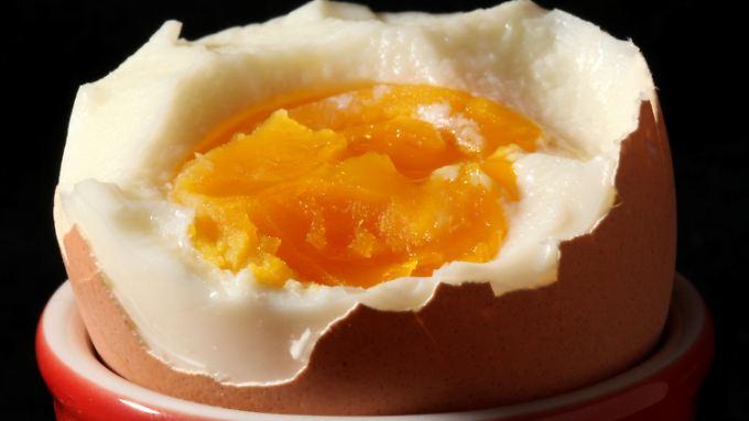 Neuer Skandal der Lebensmittelindustrie: Bio-Eier kommen aus Käfighaltung