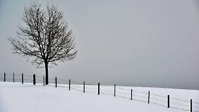 Der Winter hat Deutschland bald wieder im Griff.