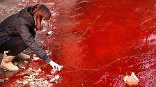 Viele Fabriken leiten ihre Abfälle direkt in  Flüsse oder ins Meer.