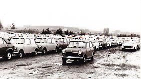 Tausende Fahrzeuge stehen in der Hochzeit auf dem Parkplatz hinter den Hallen von Seneffe.