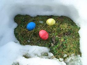 Ein Plätzchen fürs Osternest findet sich immer.