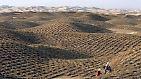 Extrem heiß, extrem kalt, extrem trocken: Wüsten dieser Welt