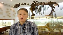 Koloss-Reste mit Muskelgewebe und Blut: Mammut-Sensationsfund weckt Klon-Hoffnung