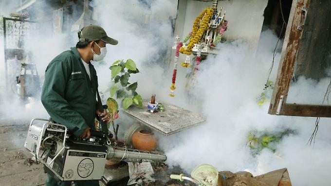 Mücken-Bekämpfung mit der Chemie-Keule in Bangkok.