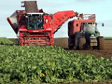 Verteilung der EU-Agrarfördermittel: Ostbauern helfen Westbauern