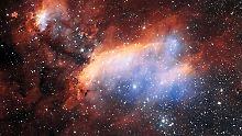 Riesige Sternkinderstube: Garnelennebel erscheint ganz scharf