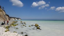 Rügens Steilküste schwindet: Kreidefelsen stürzt ab