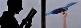 Deutschland ist nur Mittelmaß: Pisa-Schock trifft auch Erwachsene