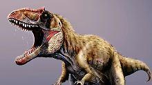 Der Dinosaurierforscher Eberhard Frey sitzt im Staatlichen Museum für Naturkunde Karlsruhe neben einem Raubsaurier Tyrannosaurus rex Schädelabguß. Foto: Uli Dec