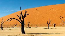 Älteste Wüste und zweitgrößter Canyon der Welt: Namibia, Land der Natur-Superlative