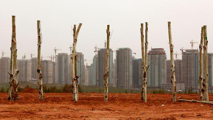Neu gepflanzte Bäume vor leer stehenden Wohnblöcken in der Stadt Ordos in der Inneren Mongolei. Bis zu einer Million neue Einwohner sollen in die Stadt ziehen - doch nur wenige sind bisher gekommen.