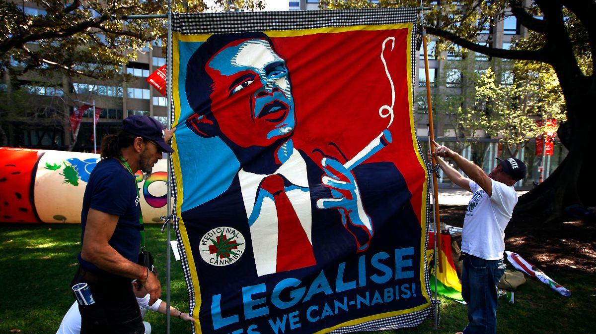 Sieger ist das Marihuana