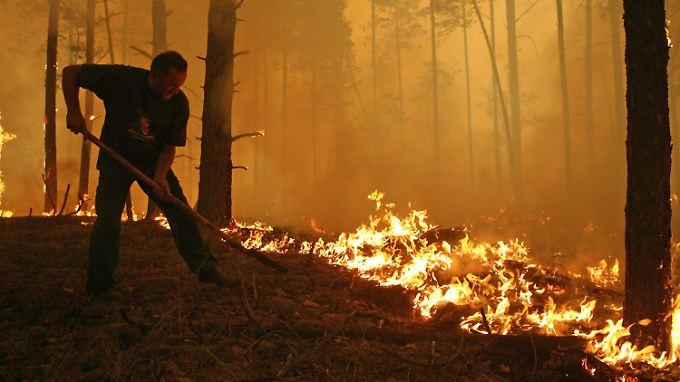 Brände in Russland: Flammen erhöhen radioaktive Gefahr
