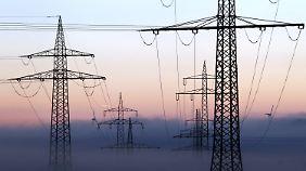 Pläne der Netzbetreiber vorgestellt: Bayern fordert Baustopp für Stromautobahn