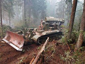 Bulldozer schlagen Schneisen, um die Ausbreitung der Waldbrände zu verhindern.