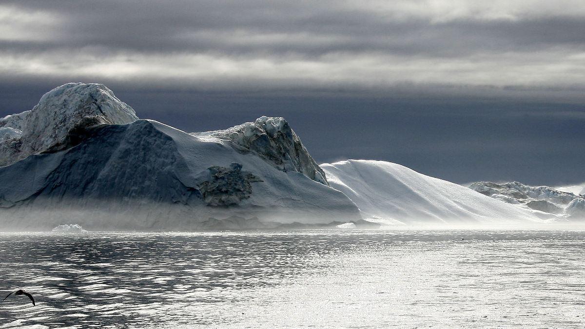 Grönlands kalte Riesen sterben