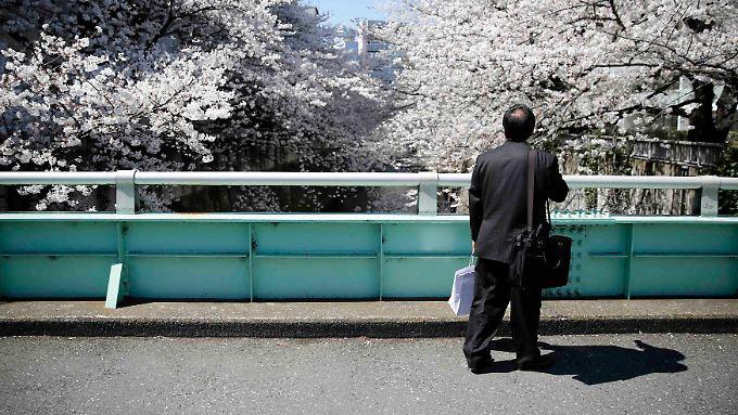 Kirschblüte in Tokio: Unverblümt analysiert die Notenbank die Konjunkturaussichten.