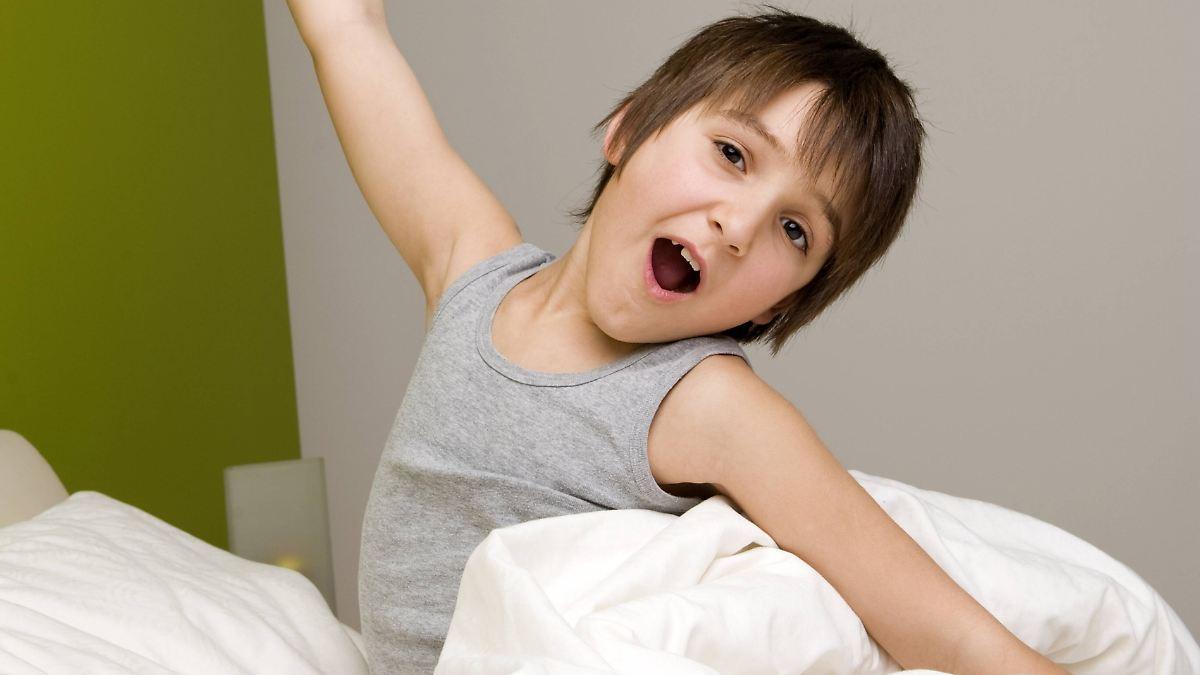 m de fliegen paaren sich nicht ausgeschlafen entwickelt sich 39 s besser n. Black Bedroom Furniture Sets. Home Design Ideas