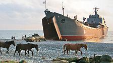 Schon in der unmittelbaren Nachbarschaft gibt es etliche dieser Gebilde. Abchasien, eine 8000 Quadratmeter große Region am Schwarzen Meer, gehört dazu.