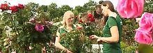 Überzeugender Service: Gartencenter im Test