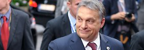 Ungarn verletzt Grundrechte: Menschenrechtler: EU zu lasch mit Orban