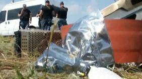 Flugzeugabsturz in der Ukraine: Neue MH17-Wrackteile und Leichen entdeckt
