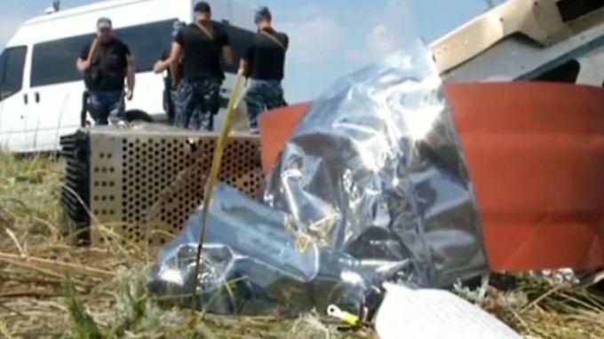 """""""Neue Beweise"""": Neue MH17-Wrackteile und Leichen in der Ukraine entdeckt"""