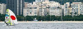 Tote Kuh im olympischen Revier: Rios Segelbucht ist völlig verdreckt