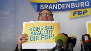 """""""Keine Sau braucht die FDP"""": FDP startet mit Anti-Werbung in den Wahlkampf"""