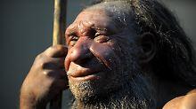 Steinzeitfunde geben Aufschluss: Wann starben Neandertaler in Europa aus?