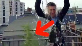 """""""Ice Bucket Challenge""""-Statement: Özdemir posiert mit Hanfpflanze auf dem Balkon"""