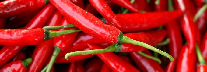 Das in Chili enthaltene Capsaicin macht die Schoten zum schärfsten Lebensmittel überhaupt.