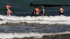 Todesfall nach Infektion: Experten warnen vor Vibrionen-Bakterien in der Ostsee