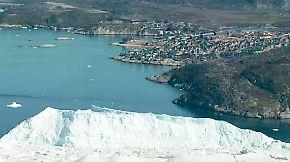 Erdbeeren in Ilulissat: Klimawandel verändert das Leben der Menschen auf Grönland