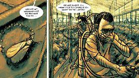 In Europa erlebt Rashid die Hölle auf Erden - ohne Schutz muss er in den Gewächshäusern Pestizide versprühen.
