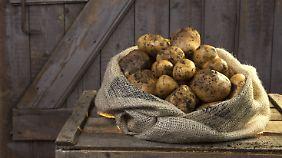 Beliebt und verschmäht: die Kartoffel.