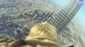 Spektakulärer Sturzflug über Dubai: Adler startet mit Rückenkamera vom höchsten Turm der Welt