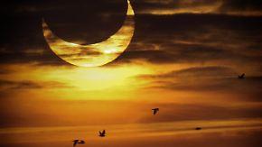 Blackout nach Himmelsspektakel?: Sonnenfinsternis fordert Netzbetreiber heraus