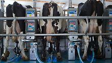 Im Frühjahr kann es eng werden: Bauern bekommen wieder mehr für Milch