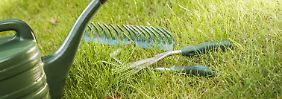 Smart Gardening: So funktioniert die digitale Gartenpflege