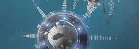 Unternehmen erwarten Wachstum: Investieren in das Zeitalter der Robotik
